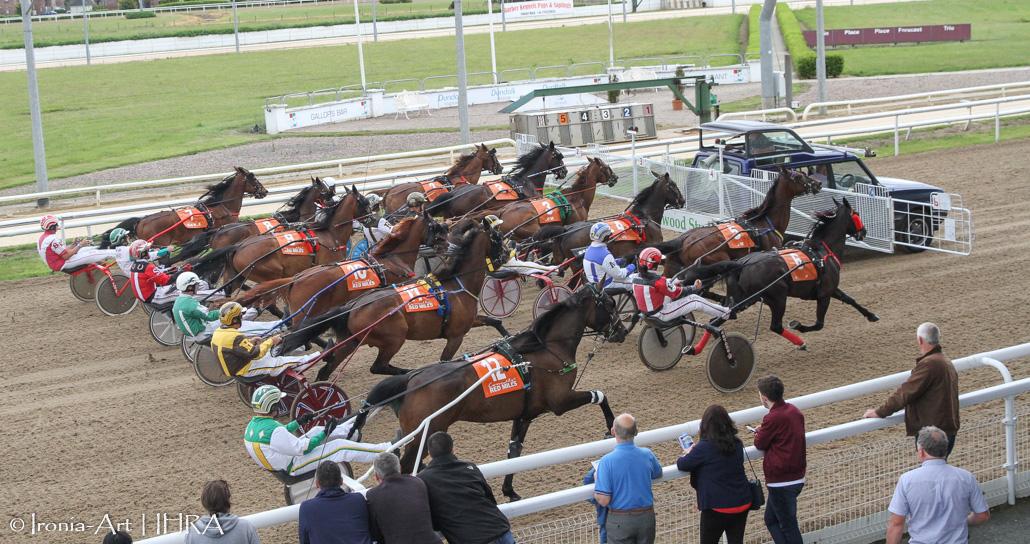 irish racing authority