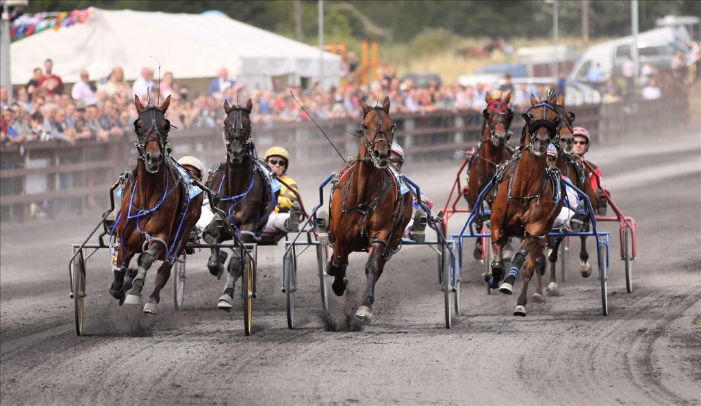 Race Cards  8-9th July